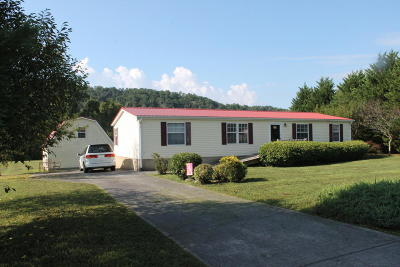 Sevierville Single Family Home For Sale: 2036 River Meadows Drive