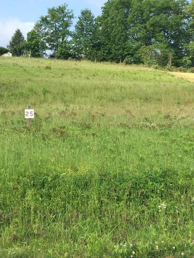 Sevierville Residential Lots & Land For Sale: Lot 25 Oma Lee Drive