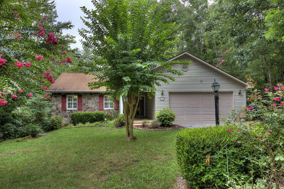 Loudon Single Family Home For Sale: 408 Igoti Lane