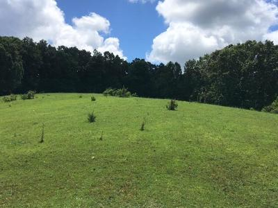 Union County Residential Lots & Land For Sale: 0 Leadmine Bend Rd