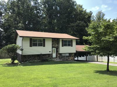 Tazewell Single Family Home For Sale: 500 Norris Drive