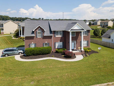 Knoxville Single Family Home For Sale: 6115 Shannon Valley Farms Blvd