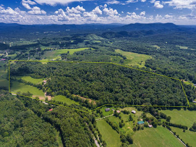 Tellico Plains Single Family Home For Sale: 498 Old State Rd