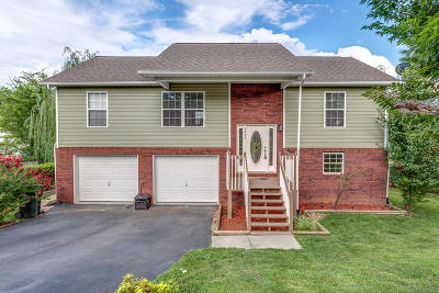 Sevierville Single Family Home For Sale: 1445 Jasmine Tr
