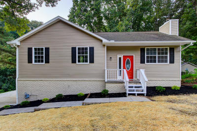 Knoxville Single Family Home For Sale: 1624 Dunraven Drive