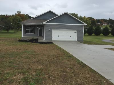 Union County Single Family Home For Sale: 1608 Tazewell Pike