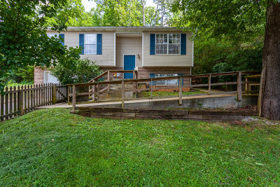 Knoxville Single Family Home For Sale: 2410 Woods Smith Rd
