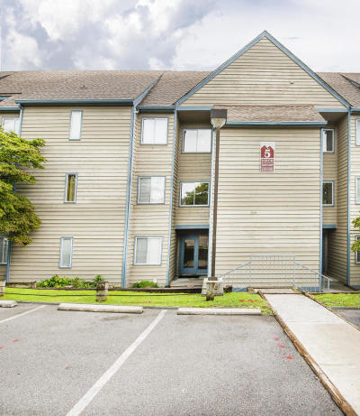 Sevier County Condo/Townhouse For Sale: 1260 Ski View Drive #5206