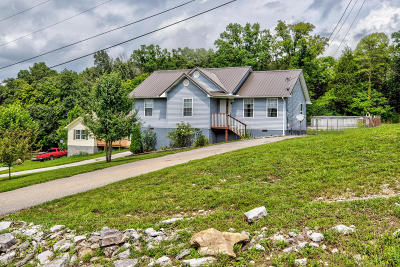 Lafollette Single Family Home For Sale: 243 Sandy Hill Rd