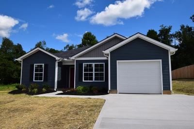 Knoxville Single Family Home For Sale: 436 Contentment Lane