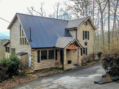 Sevier County Single Family Home For Sale: 1825 Fantasy Way