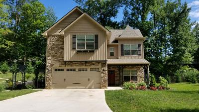 Knoxville Single Family Home For Sale: 156 Wakefield Rd