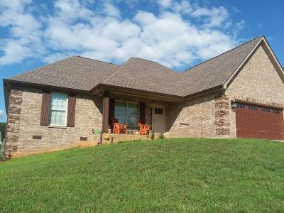 Maryville Single Family Home For Sale: 528 Ivey Vine Drive