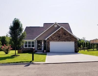 Knoxville Single Family Home For Sale: 1224 Swan Pond Lane