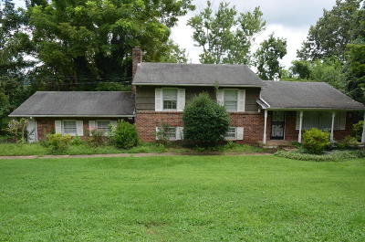 Knoxville Single Family Home For Sale: 11126 Sonja Drive