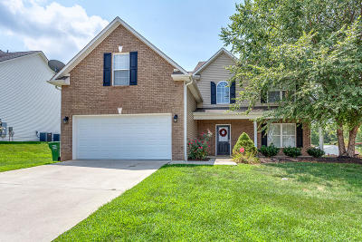 Knoxville Single Family Home For Sale: 7707 Cooper Meadows Lane