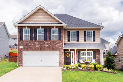 Knoxville Single Family Home For Sale: 7012 Banyon Wood Lane