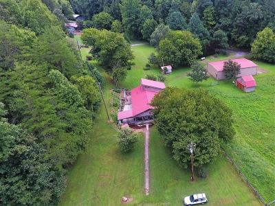 Sevier County Single Family Home For Sale: 4181 Jones Cove Rd