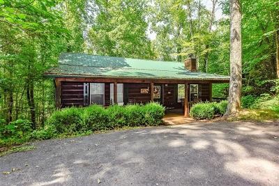 Sevier County Single Family Home For Sale: 4043 Ole Smoky Way