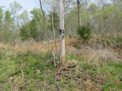 New Tazewell Residential Lots & Land For Sale: 132 Whistle Valley Rd