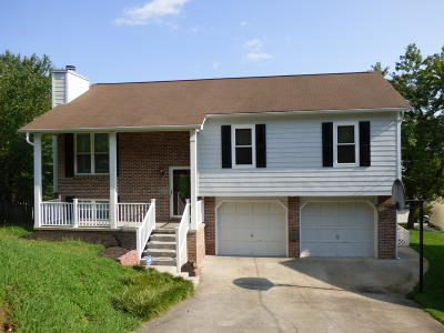 Knoxville Single Family Home For Sale: 639 Copperfield Drive
