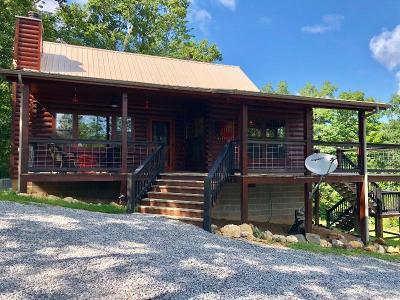 Tellico Plains Single Family Home For Sale: 325 Smithfield Rd
