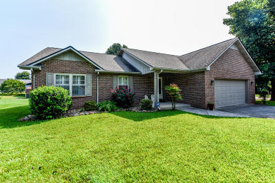 Blount County Single Family Home For Sale: 1320 Bexley Drive