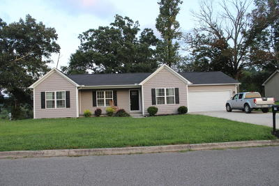 Campbell County Single Family Home For Sale: 159 Storm Lane