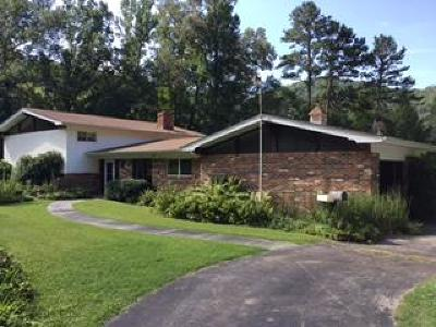 Walland Single Family Home For Sale: 507 Martin Valley Rd