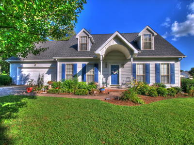 Knoxville Single Family Home For Sale: 4528 Haverty Drive