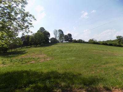 Anderson County Residential Lots & Land For Sale: 540 Mill Creek Rd