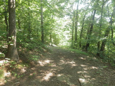 Loudon County Residential Lots & Land For Sale: 13300 Buttermilk Rd