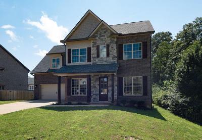 Knoxville Single Family Home For Sale: 1403 Penrose Terrace Lane