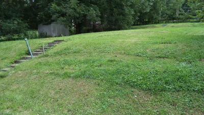 Knoxville Residential Lots & Land For Sale: 719 Ben Hur Ave
