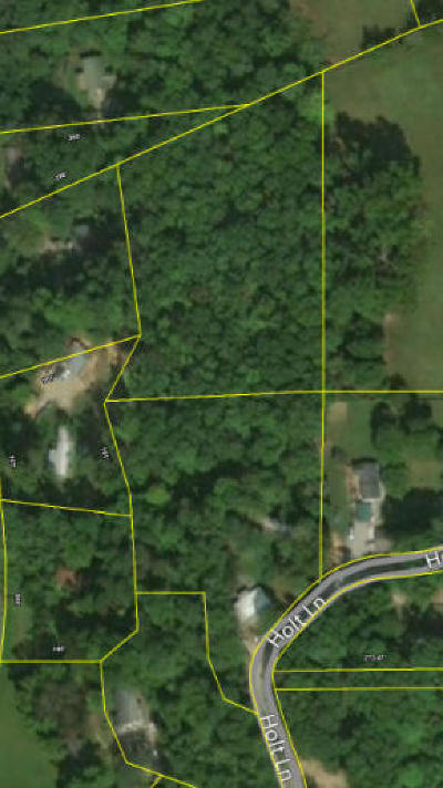 Residential Lots & Land For Sale: 133 Holt Lane