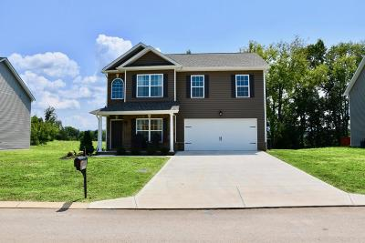 Sevier County Single Family Home For Sale: 2676 Southwinds Circle