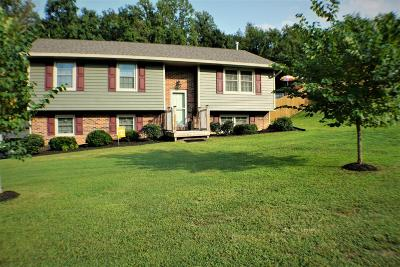 Knoxville Single Family Home For Sale: 7848 McMillan Rd