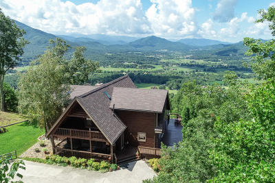 Sevierville Single Family Home For Sale: 2517 Which A Way