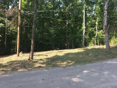 Friendsville, Greenback, Louisville, Maryville, Sevierville, Tallassee, Townsend, Townsend/walland, Vonore, Walland Residential Lots & Land For Sale: 151 Flynn Rd