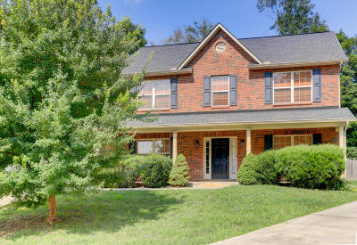 Knoxville Single Family Home For Sale: 1165 Gilbert Station Lane