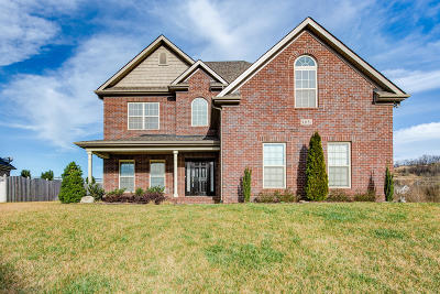 Knoxville Single Family Home For Sale: 12151 Deer Crossing Drive