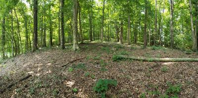 Seymour Residential Lots & Land For Sale: Springview Cir