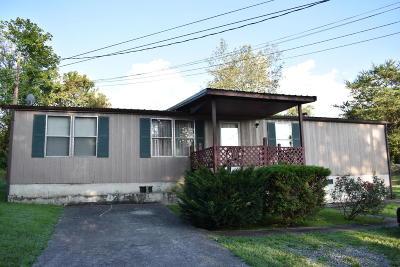 Middlesboro Single Family Home For Sale: 114 Parker Lane