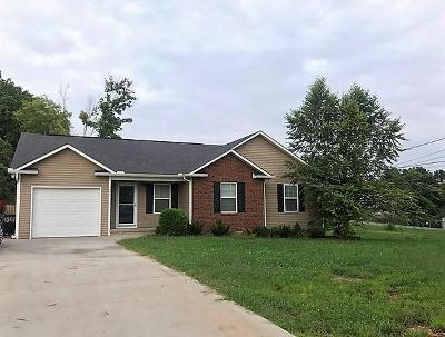 Knoxville Single Family Home For Sale: 4308 Lee Rd