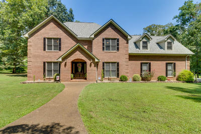 Anderson County Single Family Home For Sale: 36 Chestnut Drive