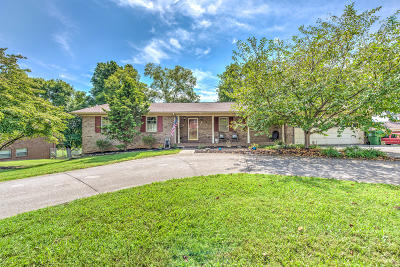 Single Family Home For Sale: 909 S Dogwood Drive