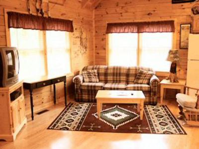 Pigeon Forge Single Family Home For Sale: 713 Osprey Way