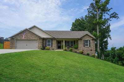 Anderson County Single Family Home For Sale: 3817 Highview Lane