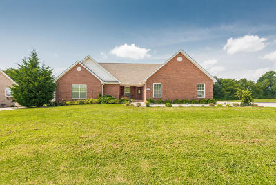 Greenback Single Family Home For Sale: 1557 Caleb Trail