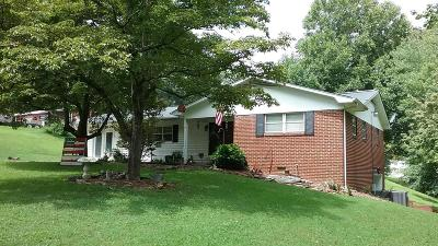 Lenoir City Single Family Home For Sale: 1481 Wesley Rd